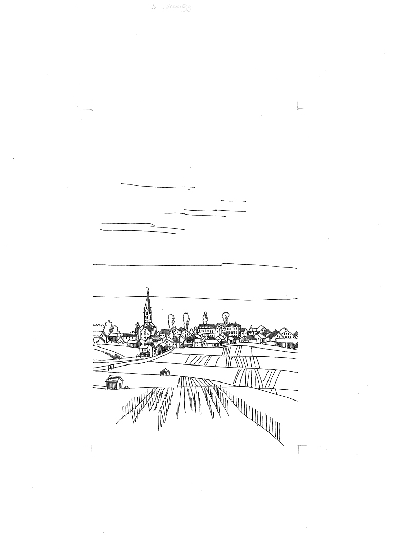 Das Dorf Erlenbach vom Rebberg aus gesehen